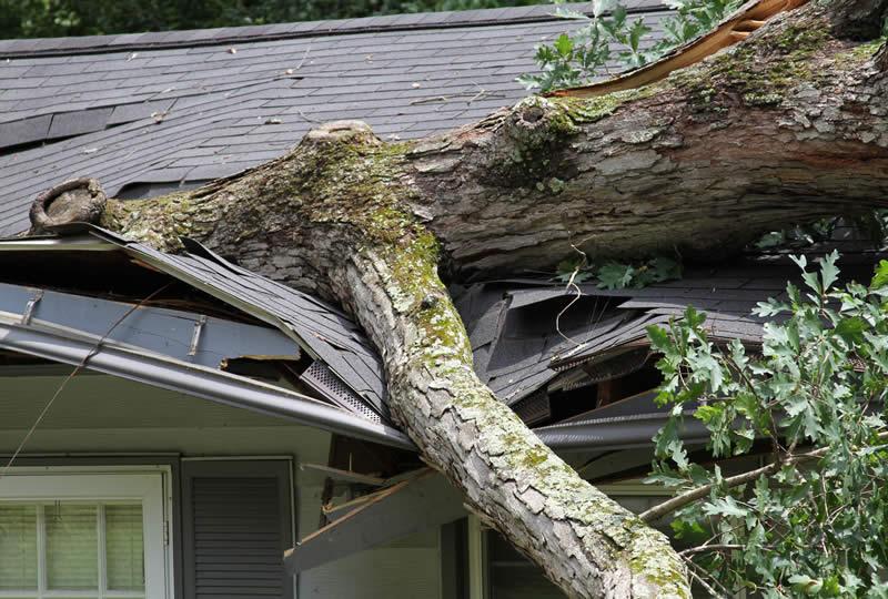 Storm Damage Restoration by Michigan Restoration Pros