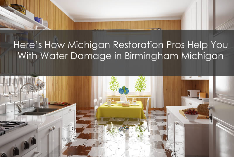 Here's How Michigan Restoration Pros Help You With Water Damage in Birmingham Michigan