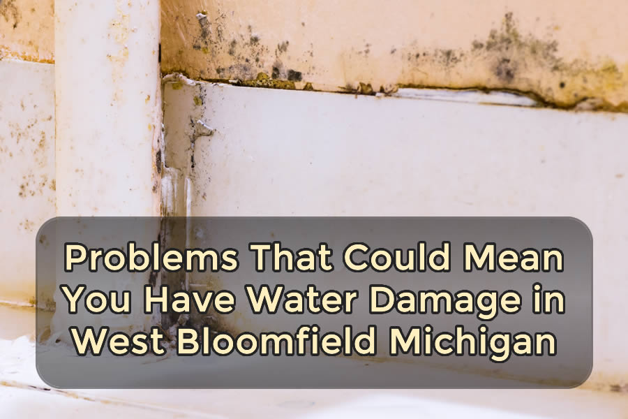 Problems That Could Mean You Have Water Damage in West Bloomfield Michigan